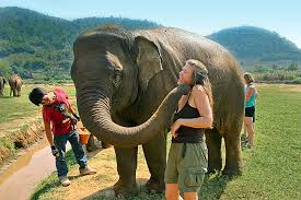 thai-adventures