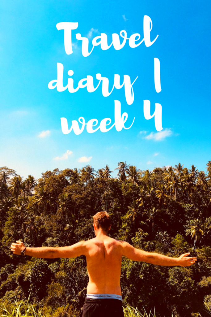 travel diary week 4