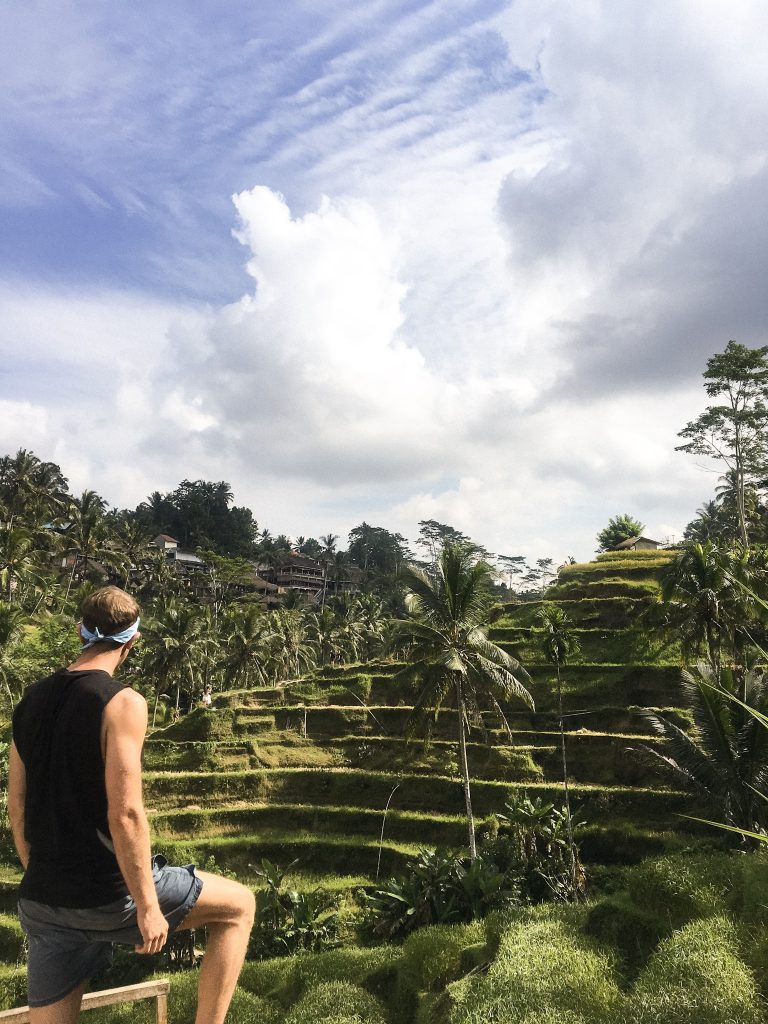ubud rice terraces, rice terraces ubud, tegalalang rice terraces in ubud, rice terraces in ubud, things to do in ubud, best things to do in ubud, top things to do in ubud, things to do in ubud bali, things to do in ubud at night, things to do in ubud blog, free things to do in ubud, things to do in ubud shopping, things to do in ubud tripadvisor, things to do in ubud centre