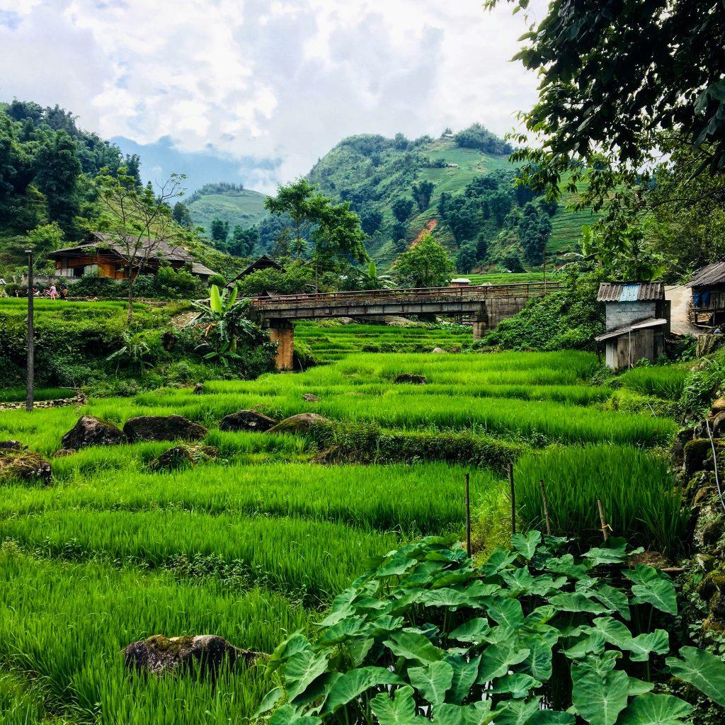 guide to Sapa trekking tours Sapa vietnam, sapa vietnam, sapa, vietnam, sapa vietnam hotels, sapa vietnam map, vietnam sapa, sapa vietnam tours, things to do in sapa vietnam, hotels in sapa vietnam