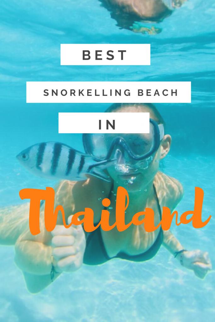 best snorkelling beach on Koh Tao