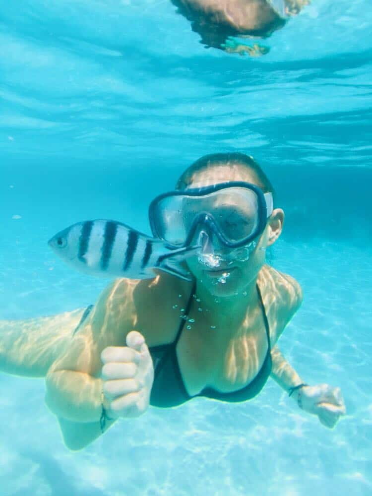 Snorkelling in Koh Tao, best snorkelling tour in Koh Tao, koh tao beaches, best beaches koh tao, koh tao beaches map, beaches koh tao, best beaches in koh tao, koh tao best beaches, beaches of koh tao