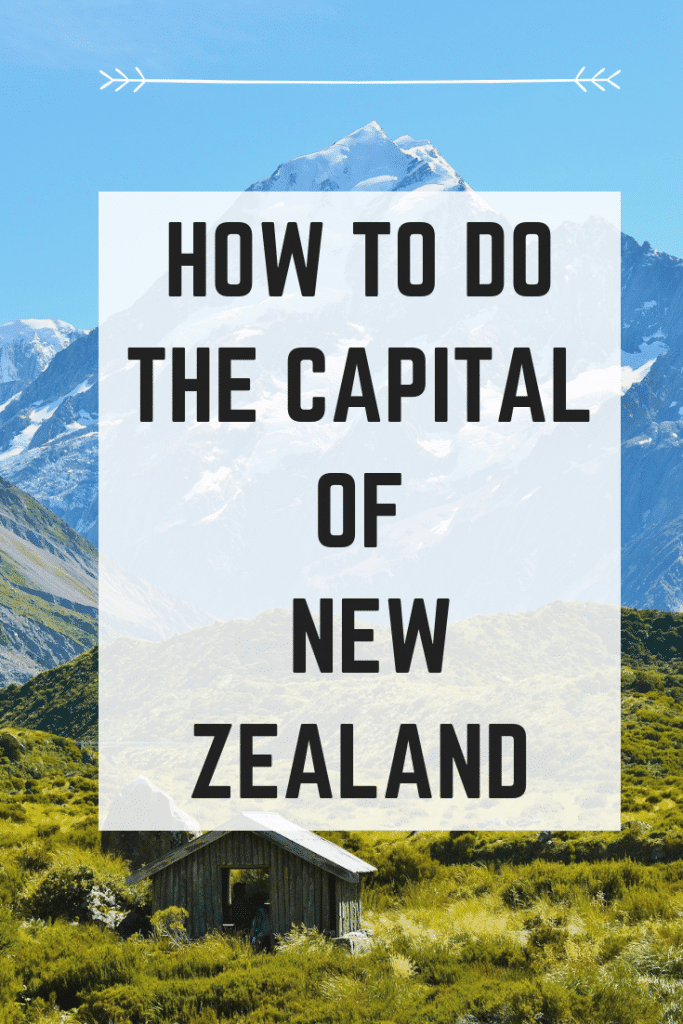 best things to do in wellington new zealand