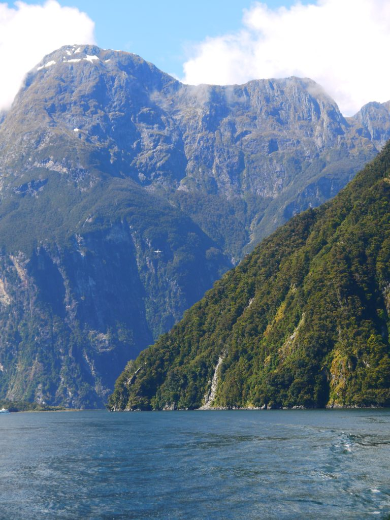 Milford sound cruise experience