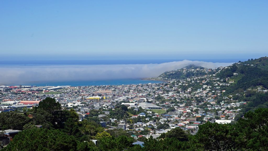 mount victoria in wellington