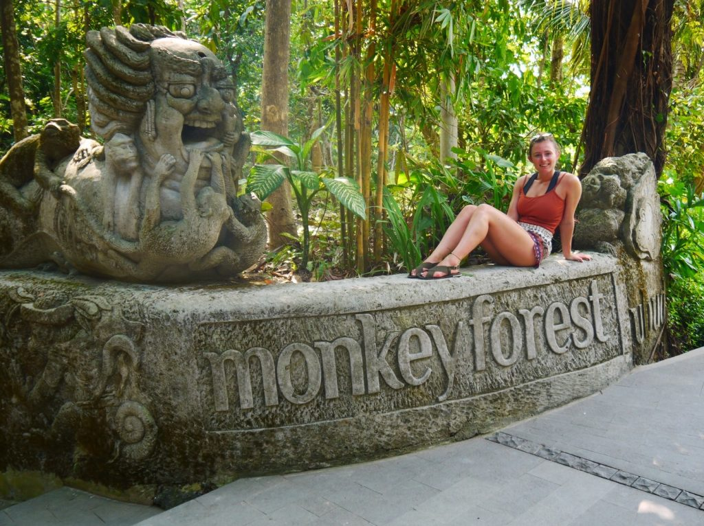 monkey forest bali, ubud bali monkey forest, monkey forest bali cost, ubud monkey forest bali, sacred monkey forest bali, bali ubud monkey forest, monkey forest bali ubud, bali monkey forest ubud, long-tail Balinese monkeys