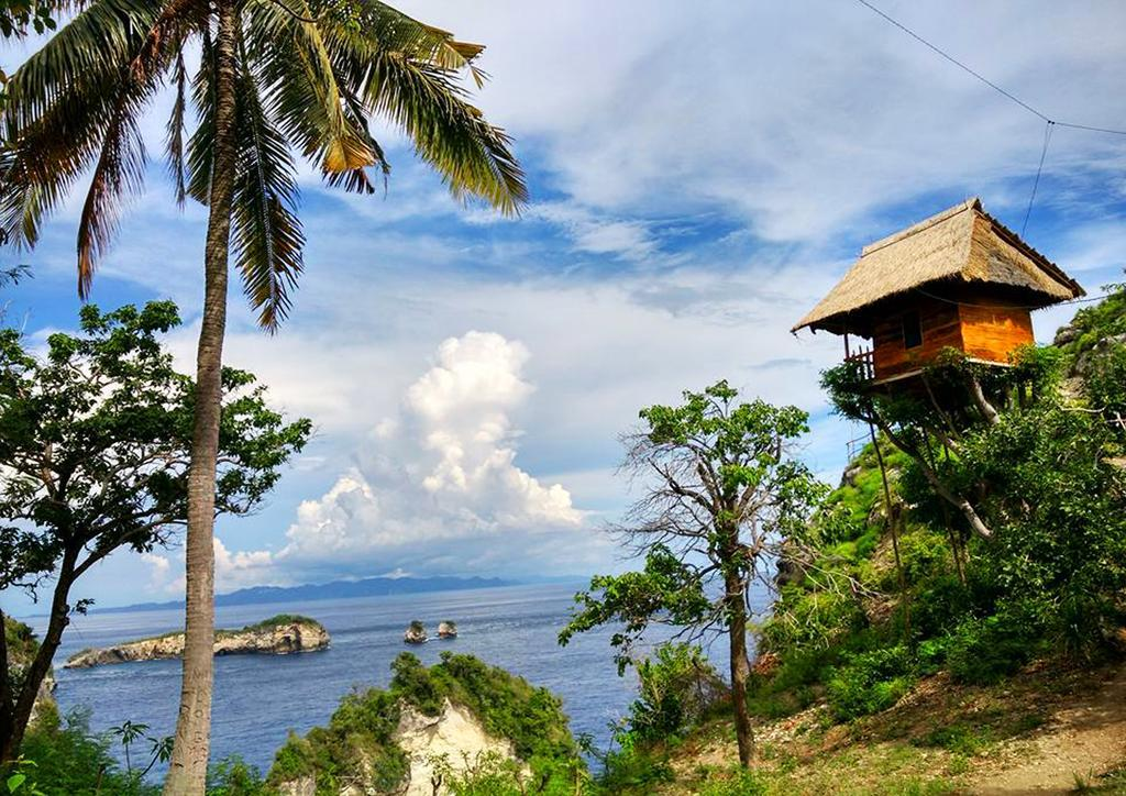 nusa penida treehouse, booking,com treehouse nusa penida, tree house nusa penida, nusa penida treehouse, bali treehouse accommoation, tree house villa bali, bamboo treehouse bali, rumah pohon treehouse, the treehouse bali, airbnb treehouse bali
