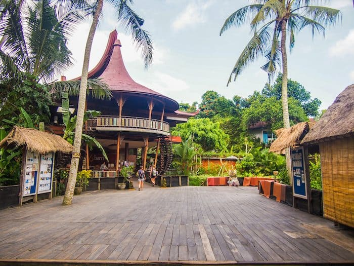 best things to do in ubud, yoga barn ubud, the yoga barn ubud, yoga barn bali, the yoga barn bali, yoga barn bali prices