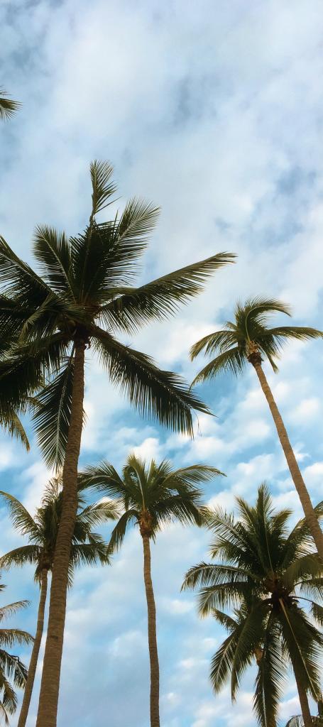 choeng mon beach koh samui, koh samui thailand beaches, koh samui beaches, koh samui best beaches, koh samui beaches map, best beaches in koh samui, koh samui photos beaches, koh samui beaches thailand, most beautiful beaches koh samui