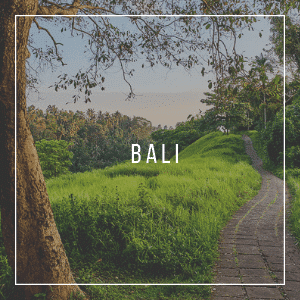 Bali travel blog