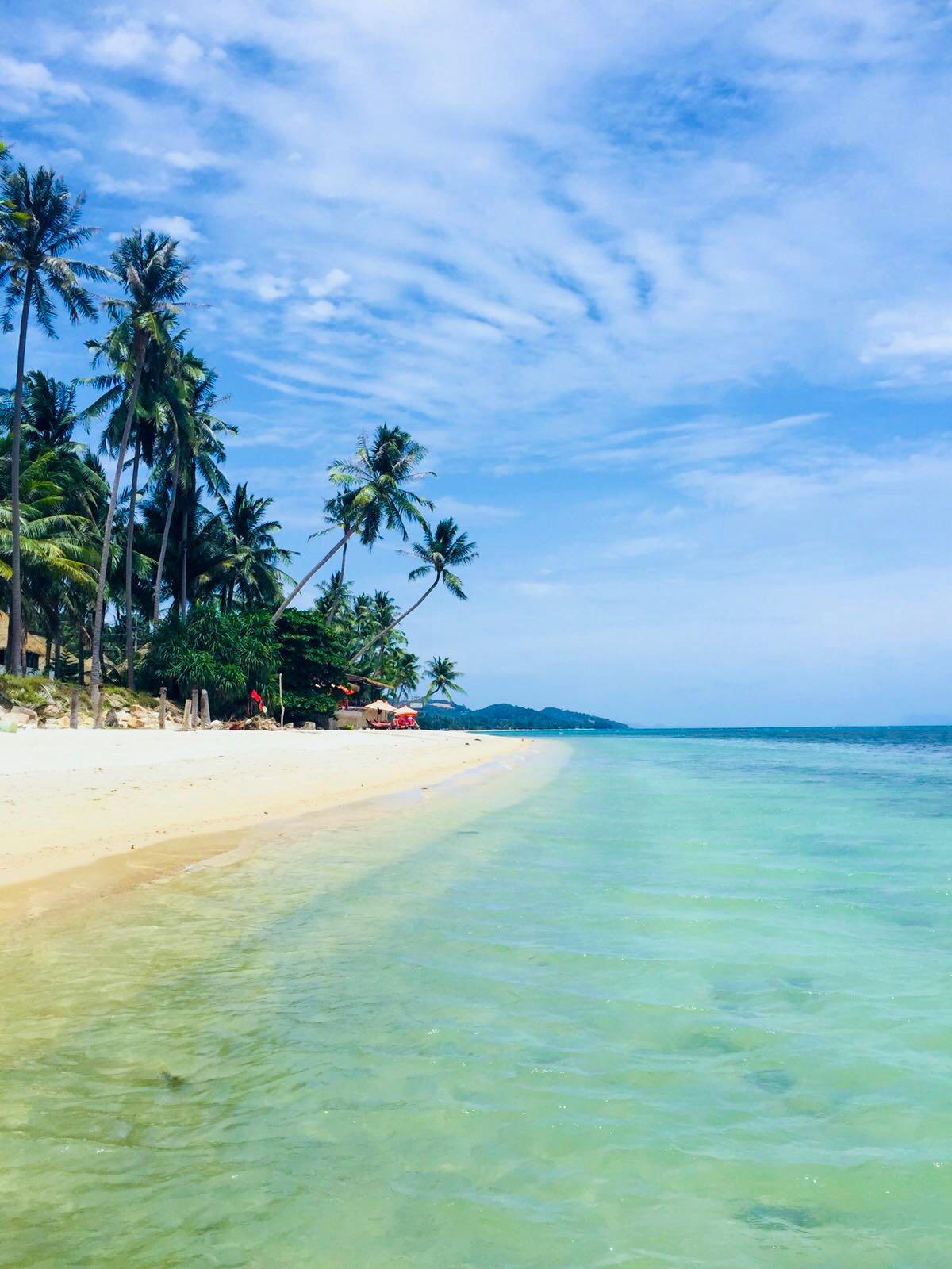 bamboo island, bamboo island phuket, bamboo island phi phi, bamboo island thailand, bamboo thailand, bamboo island krabi, bamboo island phuket, bamboo island phi phi, phi phi bamboo island
