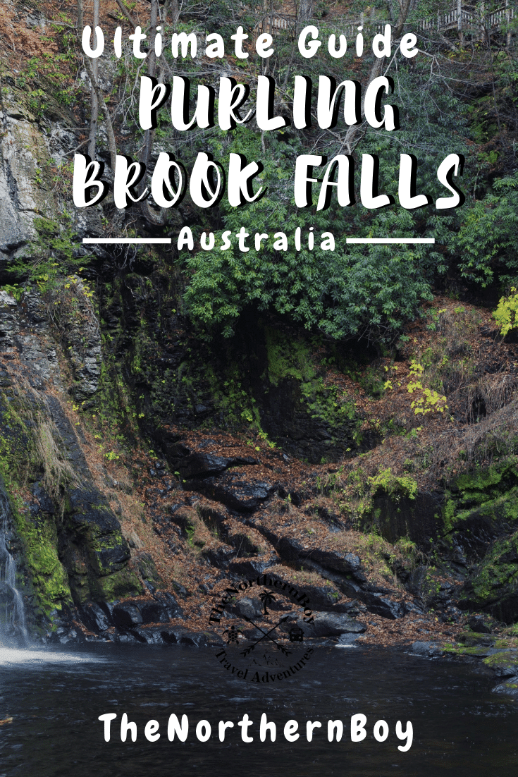 purling brook falls, purling brook falls circuit, purling brook falls springbrook, purling brook falls swimming, purling brook falls walk, purling brook falls map, purling brook falls accommodation