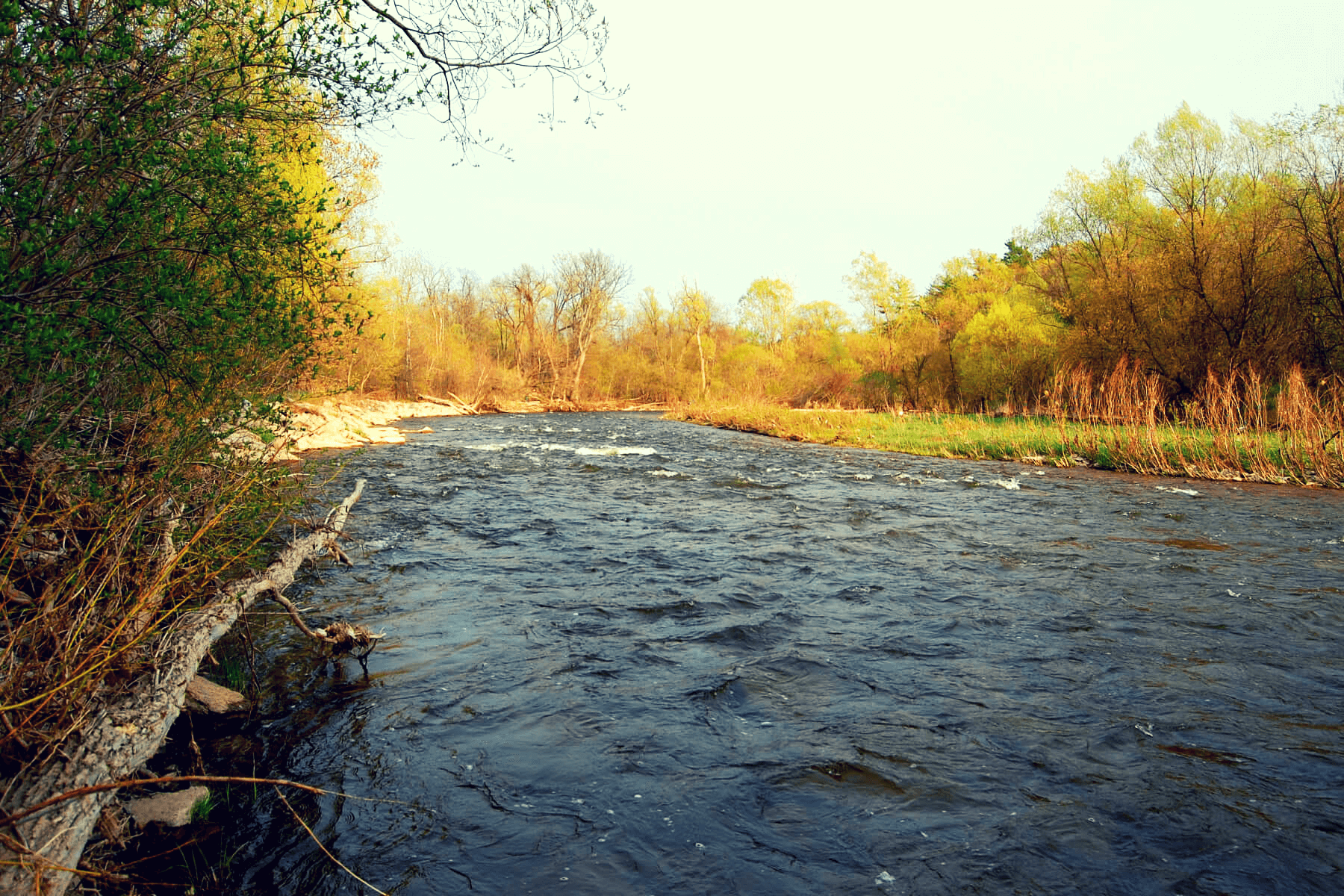 port credit river is one of the most awesome things to do in mississuaga