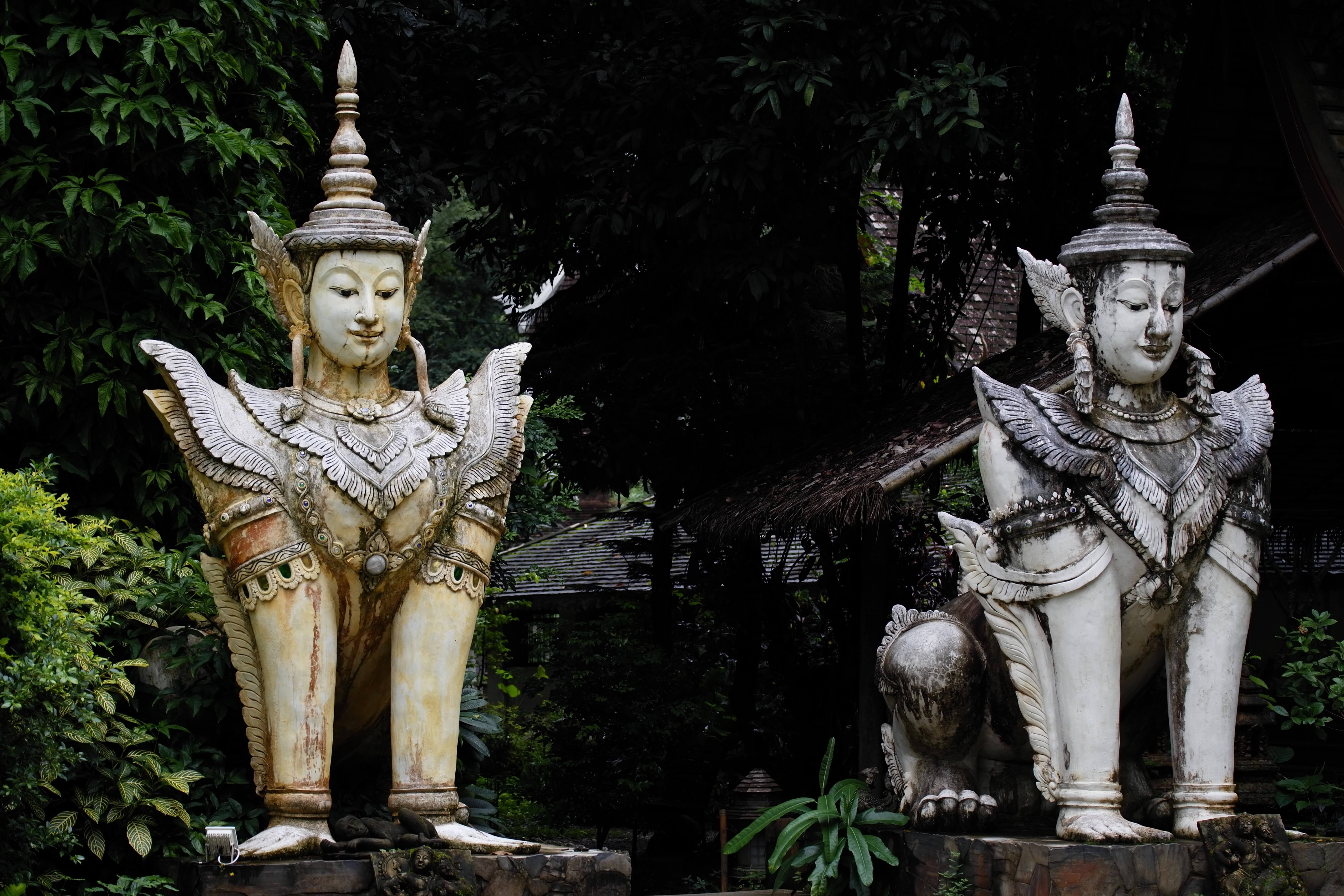 what to do in chiang mai, chiang mai thailand, chiang mai things to do, chiang mai attractions, things to do chiang mai, chiang mai city life, chiang mai temples