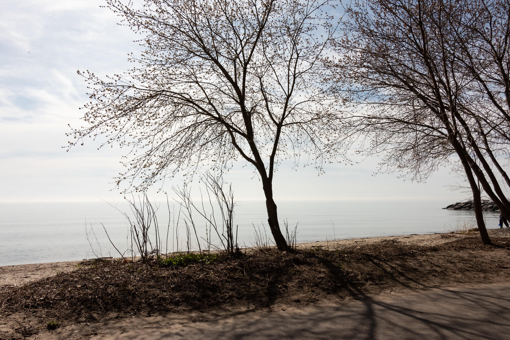running and hiking in Mississauga