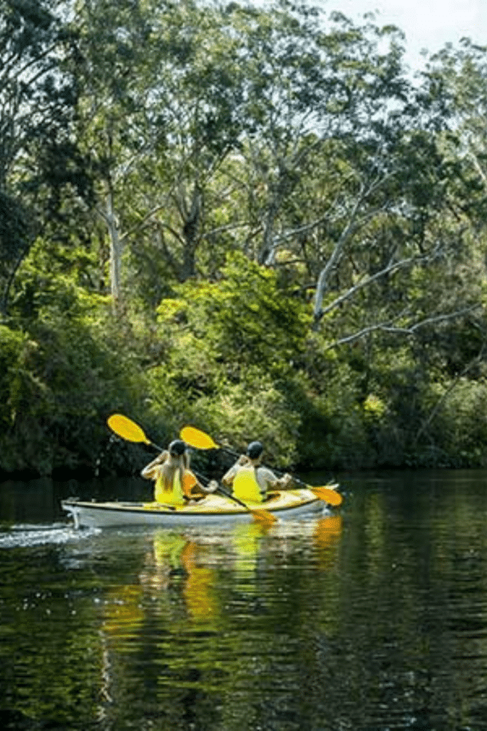 lane cove national park travel guide