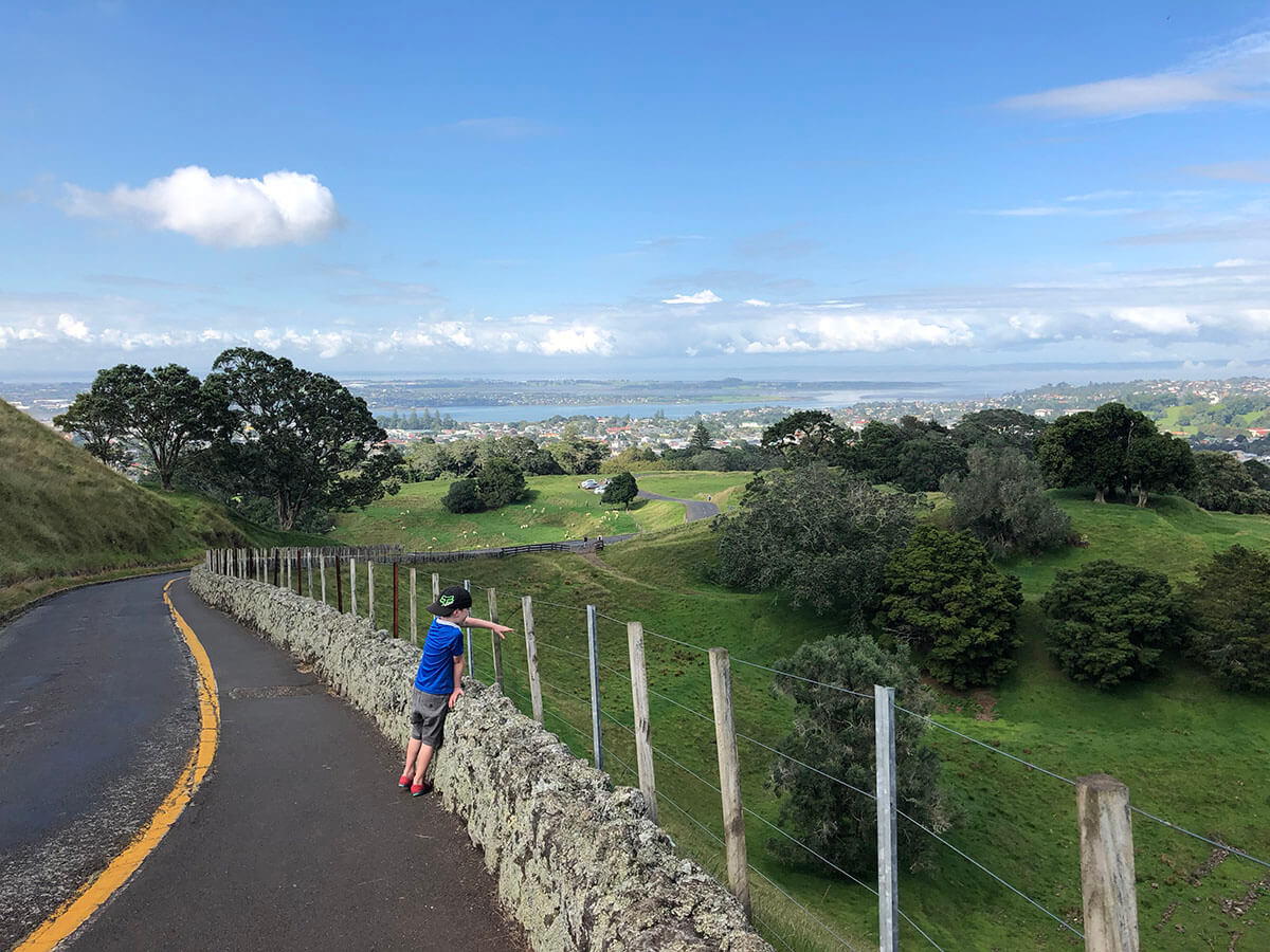 the stunning photo of one tree hill Auckland