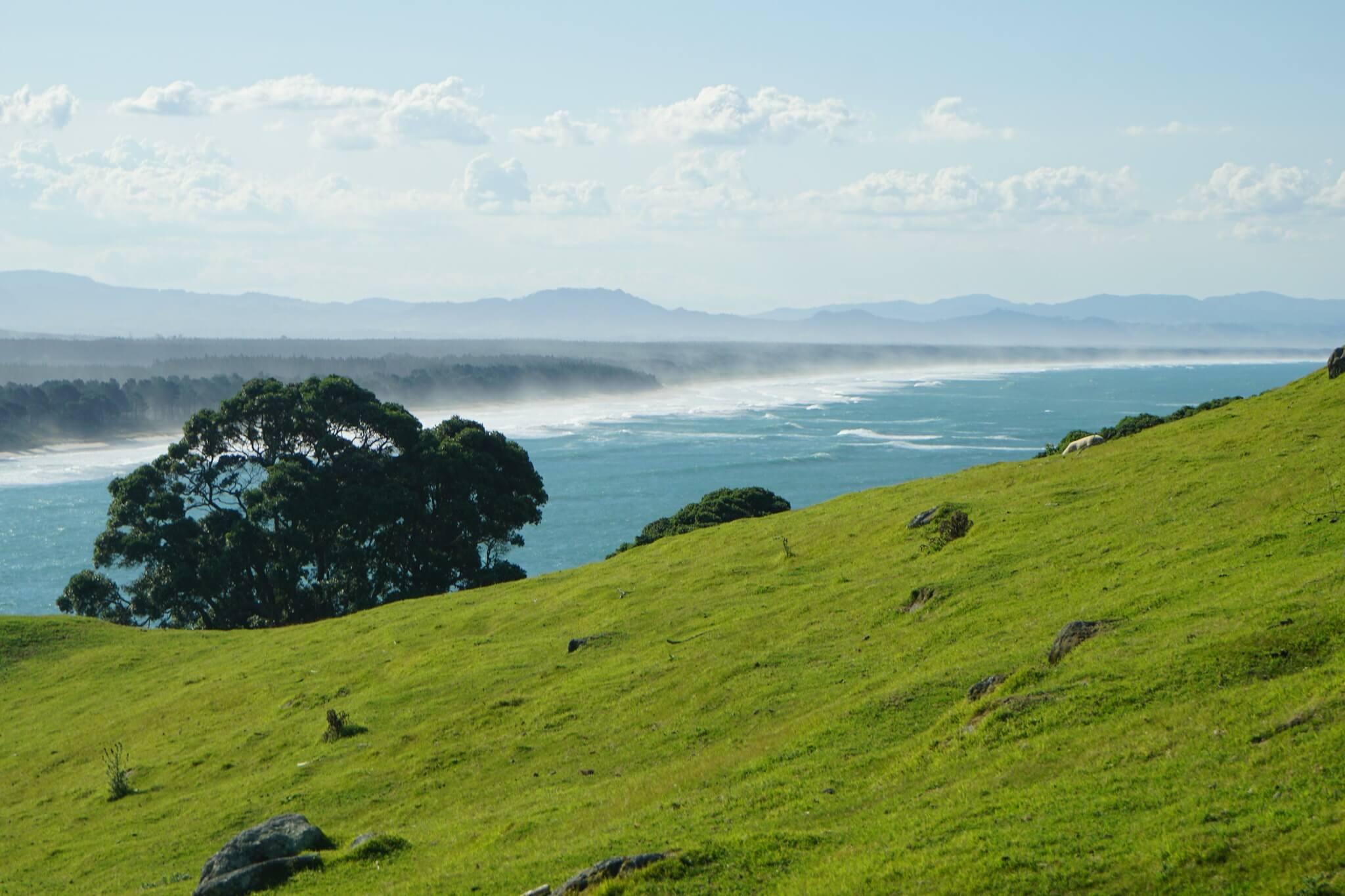 Day trip from Hamilton to Tauranga