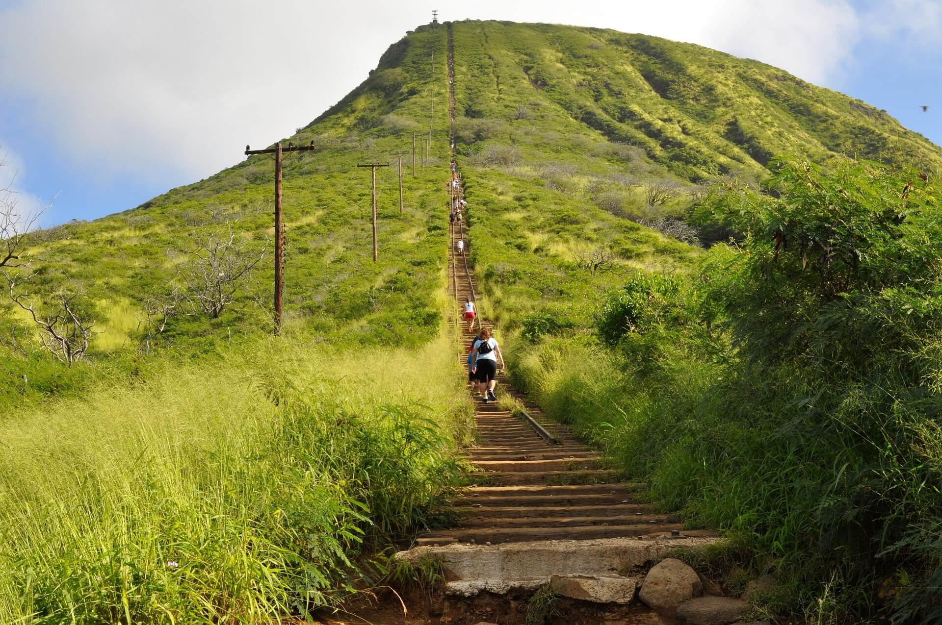 the Koko Head trail history photo
