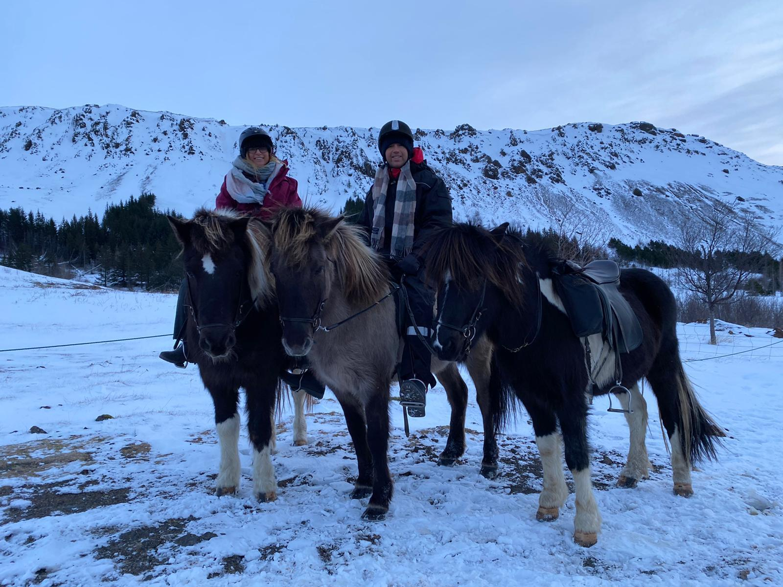 viking horses iceland tour and hot springs