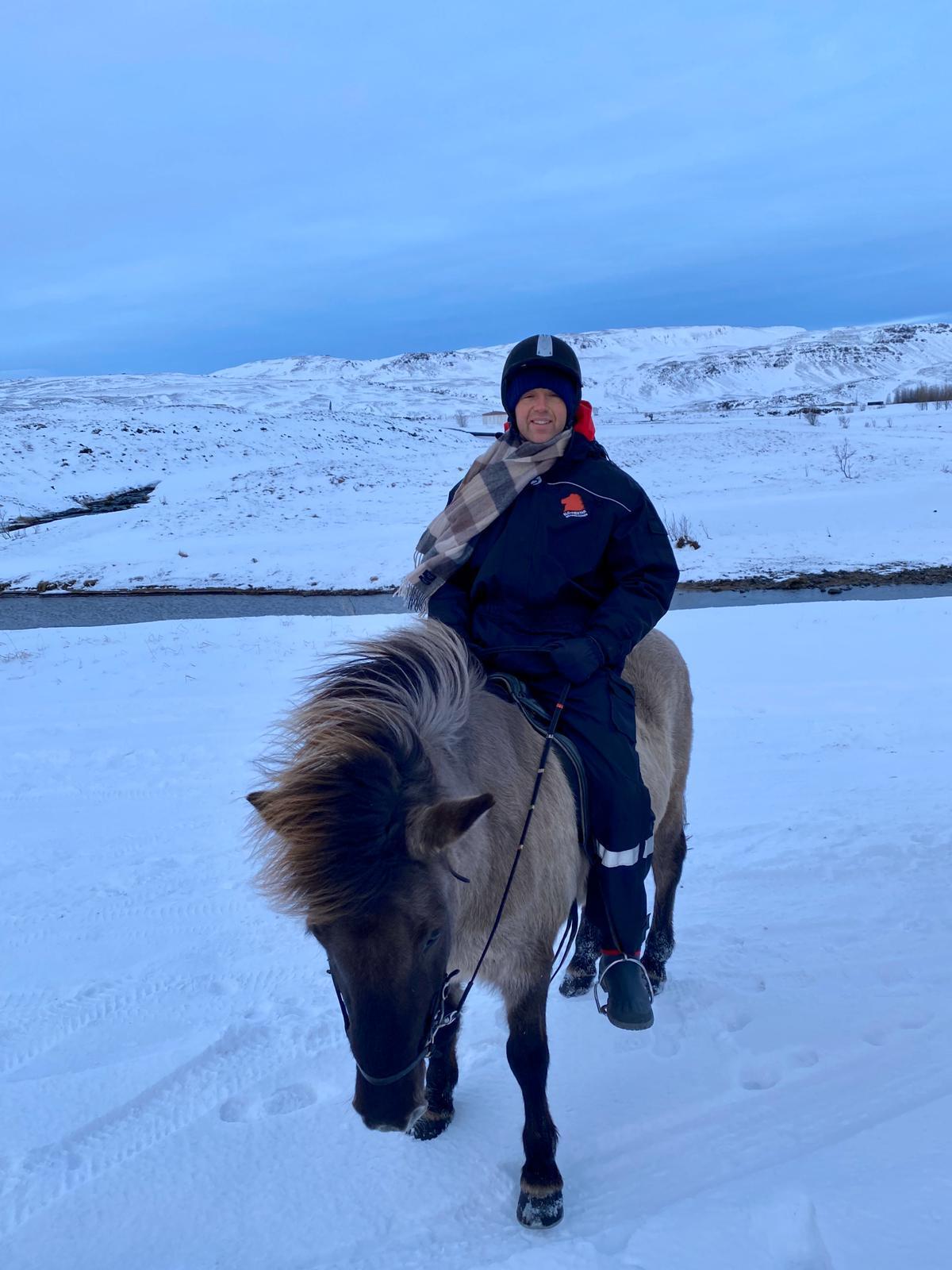 viking horses iceland