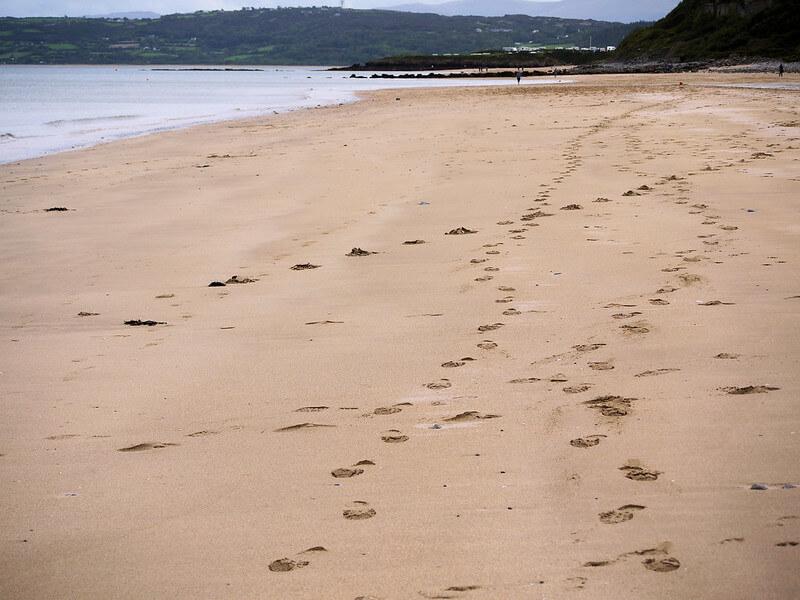 Benllech Beach dog friendly